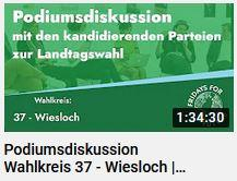 Podiumsdiskussion Wahlkreis 37 - Wiesloch   Fridays for Future BW